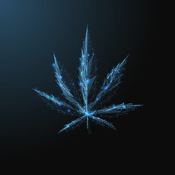 Marijuana leaf. Low poly blue. Polygonal abstract health illustration. In the form of a starry sky or space. Vector image in RGB Color mode.