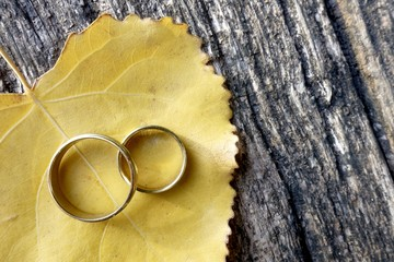 Wedding rings on autumn leaf