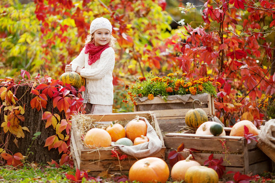 Cute little girl playing with pumpkins in autumn park. Autumn activities for children. Halloween and Thanksgiving time fun for family.