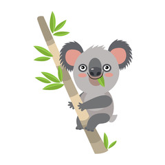 Koala Bear On Wood Branch With Green Leaves. Australian Animal Funniest Koala Sitting On Eucalyptus Branch. Kids Koala Cartoon Vector Illustration.