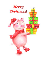 "hand drawn watercolor illustration of funny pig in red Santa hat with gifts and text ""Merry Christmas!"" on white background. Winter greating card"