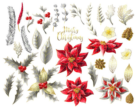 Set of Christmas decor in golden style, such as poinsettia, holly berry, fir-cone, fir branch and other isolated. Vector.