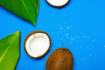 Ripe coconut and tropical leaves on blue colored background, minimal flat lay style top view. Pop art design, creative summer and food concept. Tropical fruit whole and half abstract background