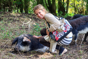 Beautiful woman petting a hairy Swallow-bellied Mangalica pig (Sus Scrofa), a Hungarian breed of domestic pig with a thick and woolly coat, in the forest in the Netherlands.