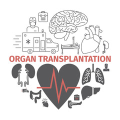 Organ transplantation banner. Vector signs for web graphics.