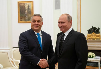 Russian President Putin shakes hands with Hungarian PM Orban during their meeting at the Kremlin in Moscow