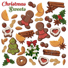 Group of vector colorful illustrations on the Christmas Traditions theme; set of different kinds of Christmas symbols and sweets: candies, fruits, nuts. Pictures contain realistic shadows and glare.