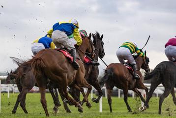 Race horses and jockeys sprint towards the finish line,