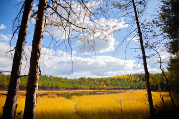lake in autumn forest against blue sky landscape