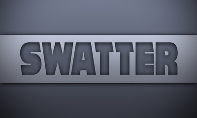 swatter - word on silver background