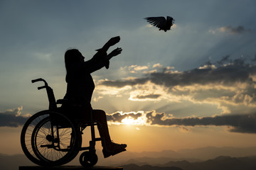 disabled people, pigeons and new life
