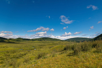 Green hills of the Altai mountain in a summer day, Russia