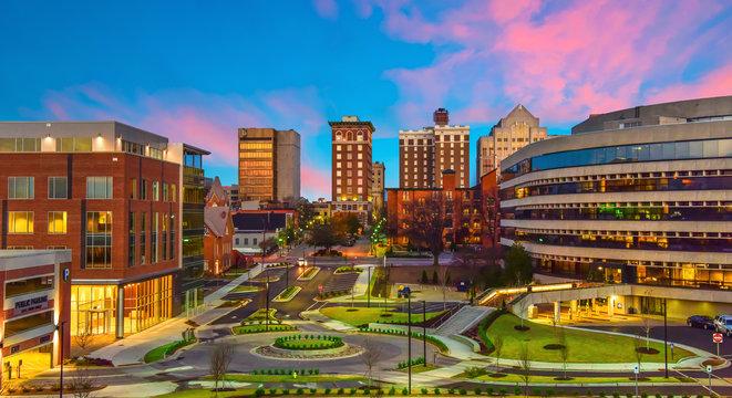 Downtown Greenville, South Carolina Skyline Cityscape