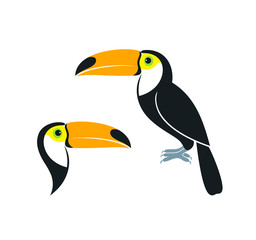 Toucan logo. Isolated toucan on white background