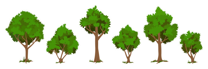 Vector trees set  Wall mural
