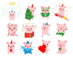 Cartoon pig, symbol of chinese 2019 new year in different poses. Big set of pig characters for seasonal greetings