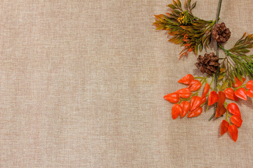 Autumn Leaves Grass Background Flat lay