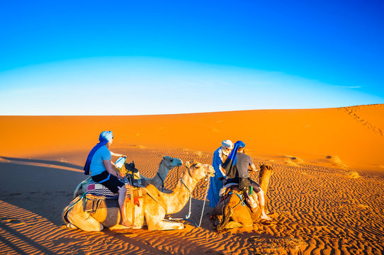 Persons doing camel trek in the desert of Morocco next to M'hamid