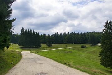 Rural mountain road