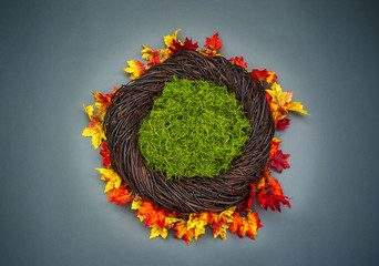 Infant Nest Fantasy Background Photo Prop with colorful fall leaves and moss Isolated on brown wooden background