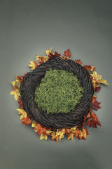 Infant Nest Fantasy Background Photo Prop with fall leaves and moss Isolated on gray green background.