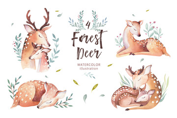 Cute watercolor baby deer animal , nursery isolated illustration for children clothing, pattern. WatercolorHand drawn boho image Perfect for phone cases design, nursery posters, postcards