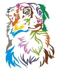 Colorful decorative portrait of Dog Australian shepherd vector illustration