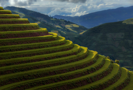 Scenic view of terraced rice fields against cloudy sky
