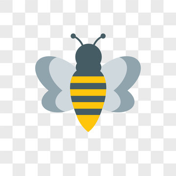 Bee vector icon isolated on transparent background, Bee logo design