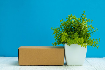 Empty Package brown cardboard box or tray and little decoration tree in white vase on bright white wooden table with blue wall background. copy space