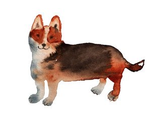 Watercolor image of dog