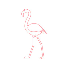 Exotic tropical bird flamingo.