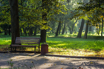 park outdoor concept place environment with asphalt concrete road for walking alley way wooden bench in autumn fresh seasonal weather and morning time with sun rays between tree branches