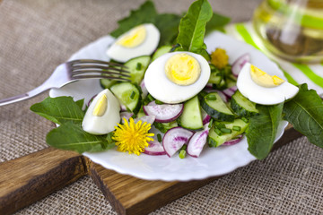 Salad of dandelions, Healthy spring salad of young leaves of dandelion, cucumber, radish and egg on a plate closeup