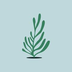 Green aqua seaweed algae illustration