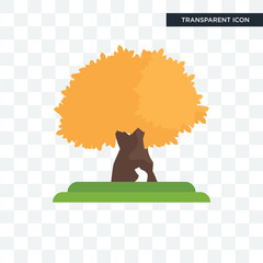 The Maples tree vector icon isolated on transparent background, The Maples tree logo design