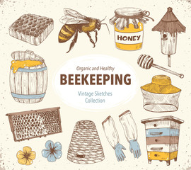 Hand drawn apiary objects. Beekeeping inventory in sketch style. Vector Illustration.