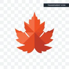 maple leaf vector icon isolated on transparent background, maple leaf logo design