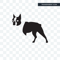 boston terrier vector icon isolated on transparent background, boston terrier logo design