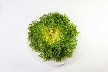 White bowl with head of frisee lettuce, overhead view, isolated on white, horizontal aspect