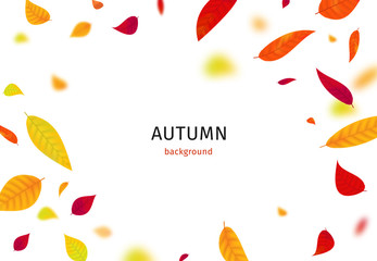 Autumn background with falling leaves. Vector