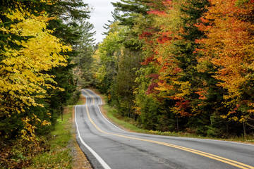 A road surrounded by fall color in New England