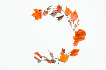 Autumn background. Composition made of dry autumn leaves on the wooden background with free space for text