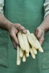 Man holding bundle of organic green asparagus in hands