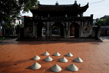 Vietnamese conical hats dry in the sun before being sold at Chuong village outside Hanoi