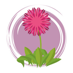 Flower round emblem