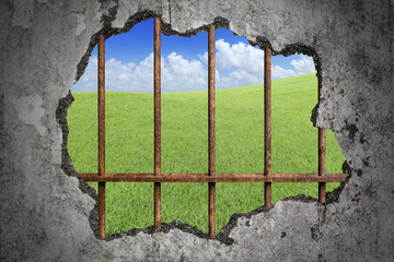 Broken old grunge wall and old prison rusted metal bars with green lawn with cloud and blue sky as background, concept of lack of freedom