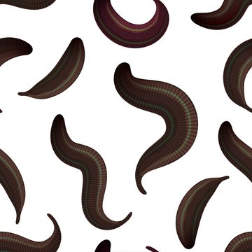 seamless  leeches on a white background medical leeches, isolated animals. Vector illustration of bloodsucking worms