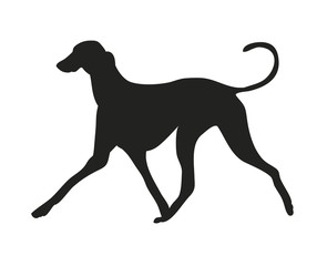 dog runs silhouette, vector