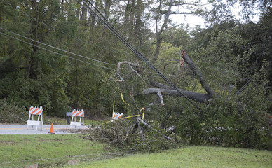 Power lines down in Wagram North Carolina after Hurricane Florence